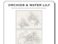 Valentina Sardu - Orchids & Water Lily – Schema cartaceo