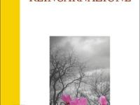 Annie Besant - Reincarnazione