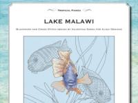 Ricamo Punto Croce e Blackwork: Lago Malawi – Ebook da scaricare