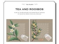Valentina Sardu - Tea and Rooibos - Schema cartaceo