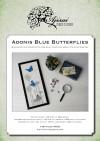 Ricamo Punto Croce e Blackwork: Farfalle Bellargo<br /> Ebook da scaricare